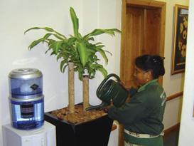 lindol-plant-staff2